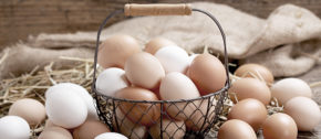 Don't Put All Your Digital Advertising Eggs In One Basket.
